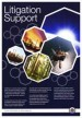 litigation-brochure